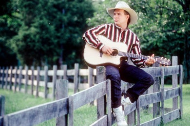 garth-on-fence